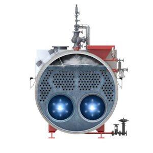 generatori di vapore con portellone